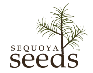 Sequoya Seeds
